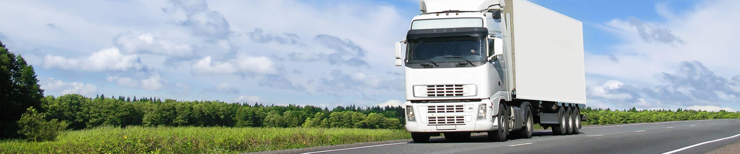 Fahrzeugwaagen und Gleiswaagen